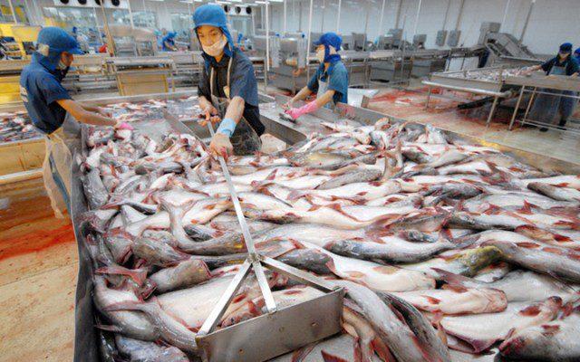 Во Вьетнаме выросло производство аквакультурной продукции