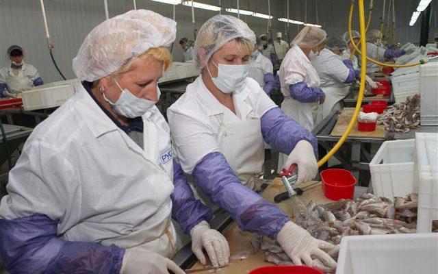 Российские производители рыбы нуждаются в механизации труда