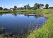 На землях сельхозназначения в Приморье разрешили развивать прудовую аквакультуру