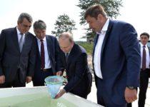 Владимир Путин выпустил омуля в новую жизнь