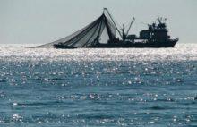 Севастопольская делегация приняла участие в Международном рыбопромышленном форуме