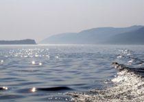 В акватории Севастополя прибавилось заповедных вод
