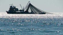 Крым — место рыбное