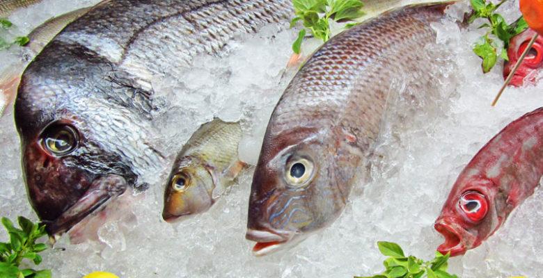Эксперты оценили новый техрегламент по рыбной продукции в действии
