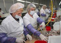Аквакультура - один из двигателей пищевой промышленности