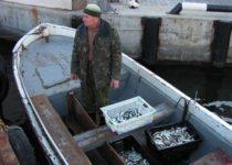 Зимняя путина крымских рыбаков ставит новые рекорды