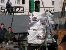 Есть первые уловы крымских рыбаков в наступившем году
